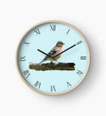 Chaffinch - Roman dial markings, Blue background Clock