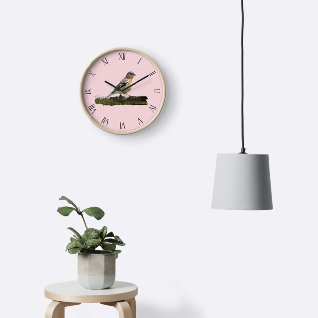Chaffinch - Roman dial markings, Pink background by ipgphotography