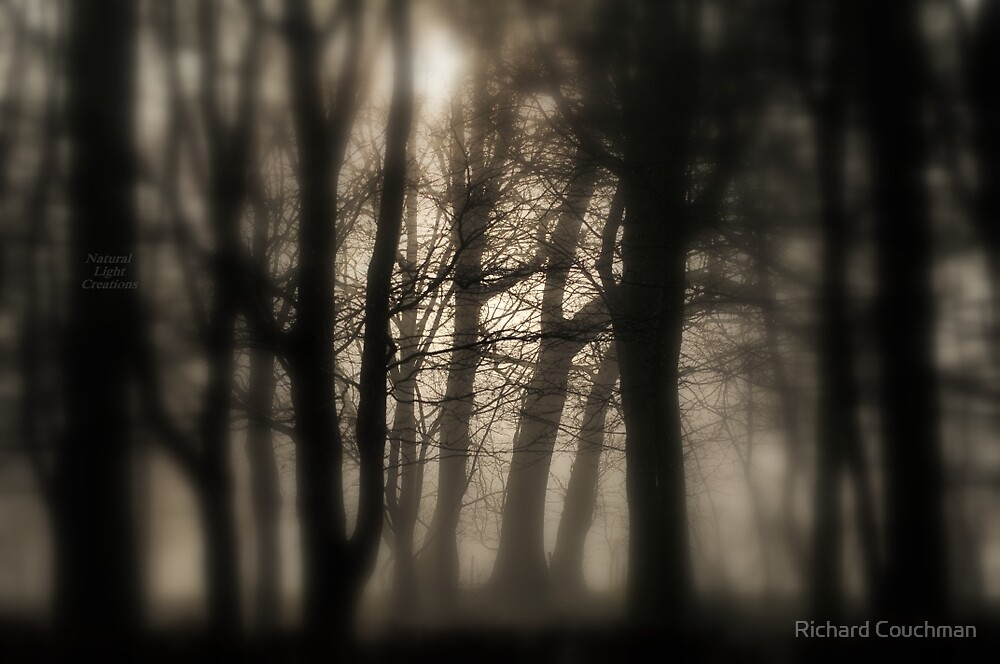 """ Woods In Freezing Fog "" by Richard Couchman"