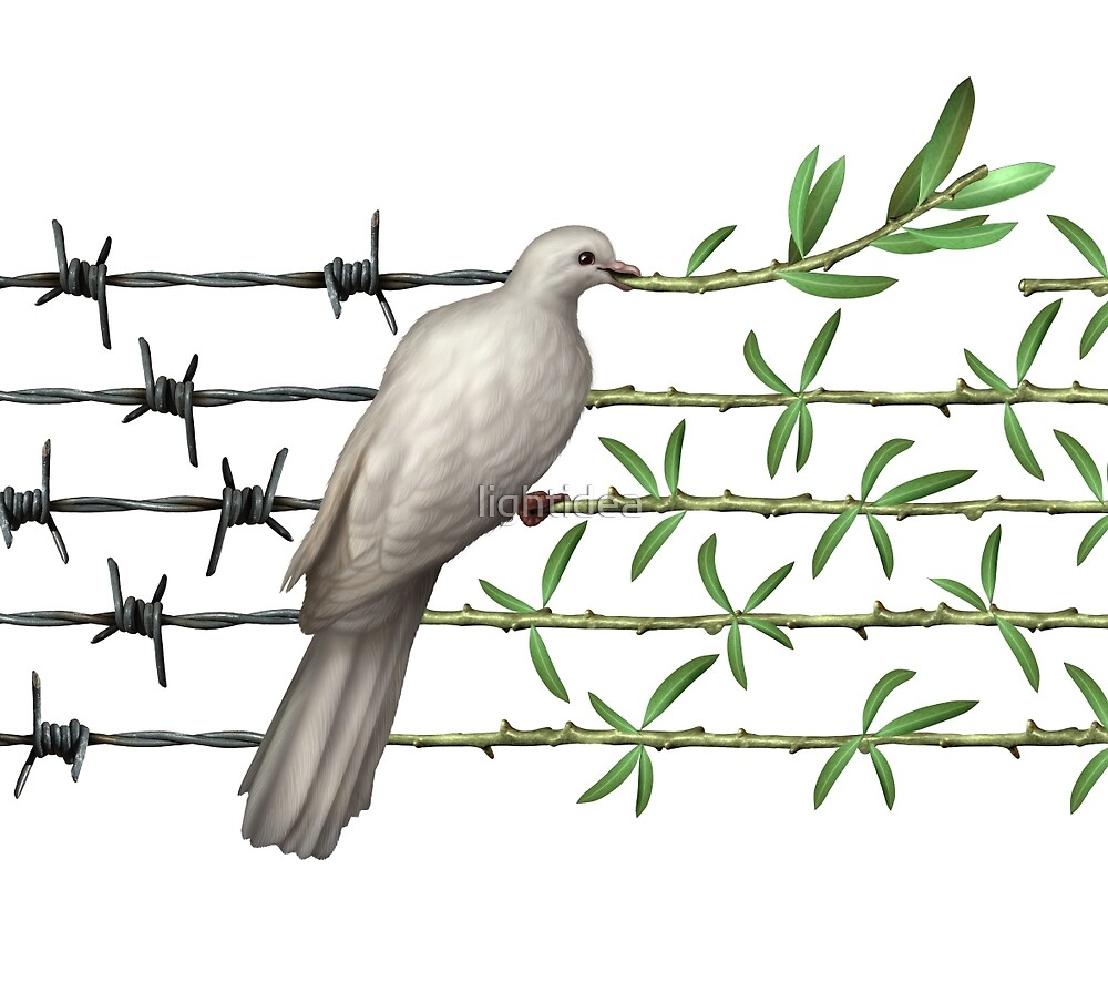 Dove With Olive Branch and Barbed Wire by lightidea