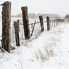 Winter On The Farm by Gregory J Summers