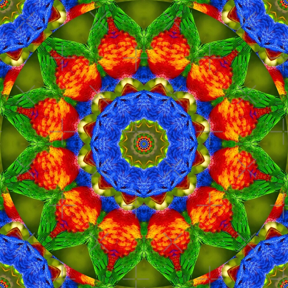 Feather Mandala 3 by tereanahata