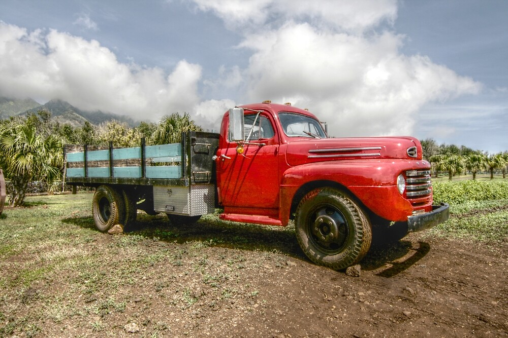 Old truck in Hawaii by Michel Lagueux