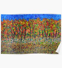 035 Fall Colors Poster