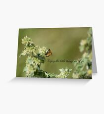 Bee-Enjoy the little things in life Greeting Card