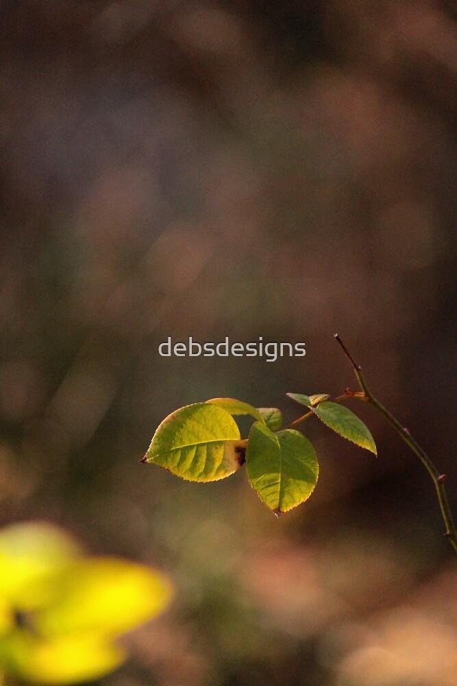 Bokeh Leaves II by debsdesigns