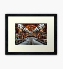 Natural History Museum Framed Print