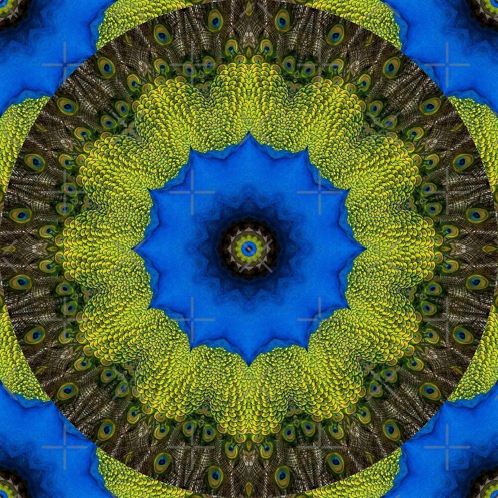 Feather Mandala 5 by tereanahata