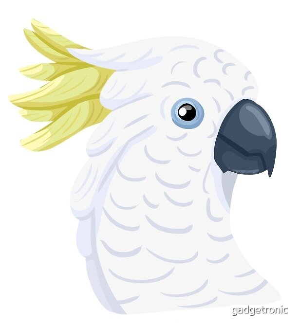 Blue-Eyed Cockatoo by gadgetronic