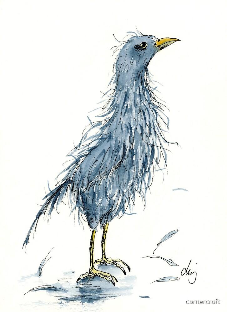 Comic bird bad hair day by cornercroft