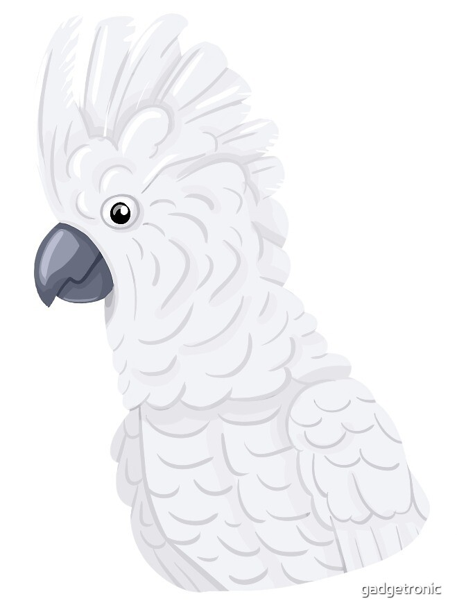 White Cockatoo by gadgetronic