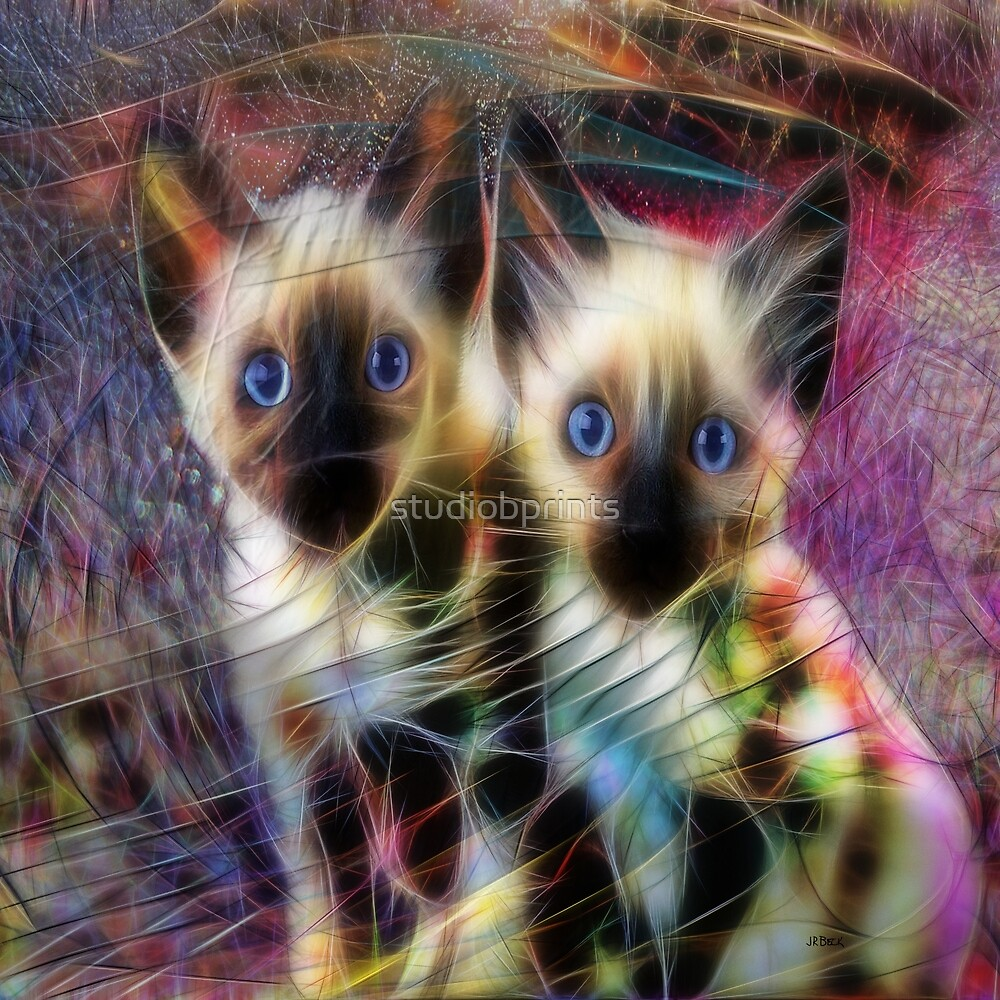 Siamese Cuties (Square Version) - By John Robert Beck by studiobprints