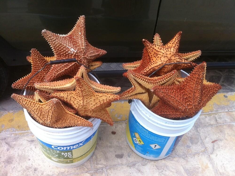 Buckets of Stars by aquariusrising