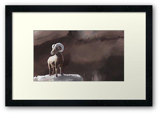 Bighorn Sheep by KRZinner