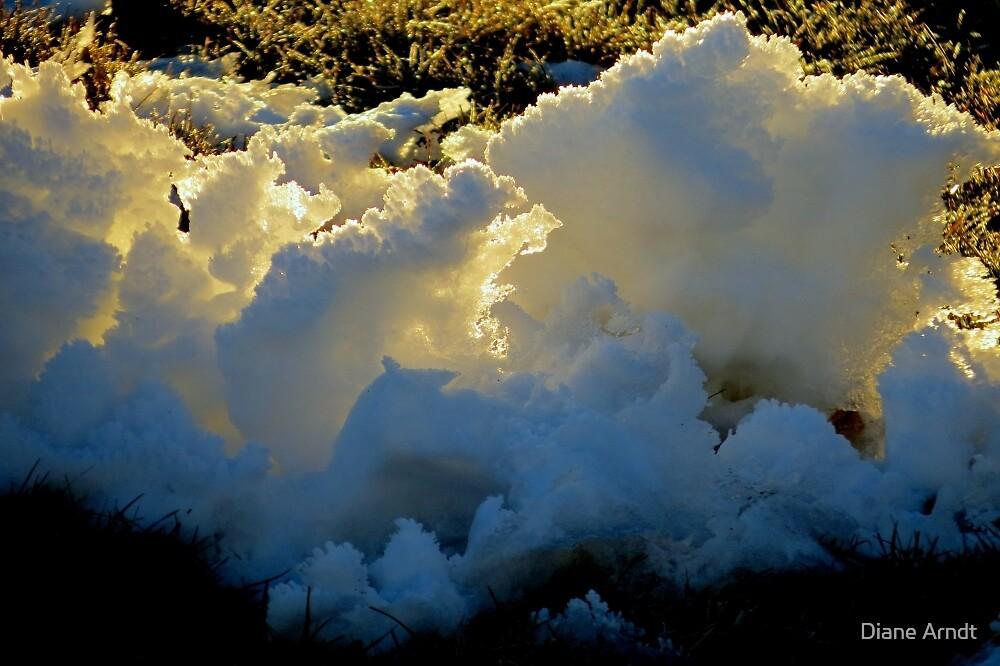 Sun Through Snow by Diane Arndt