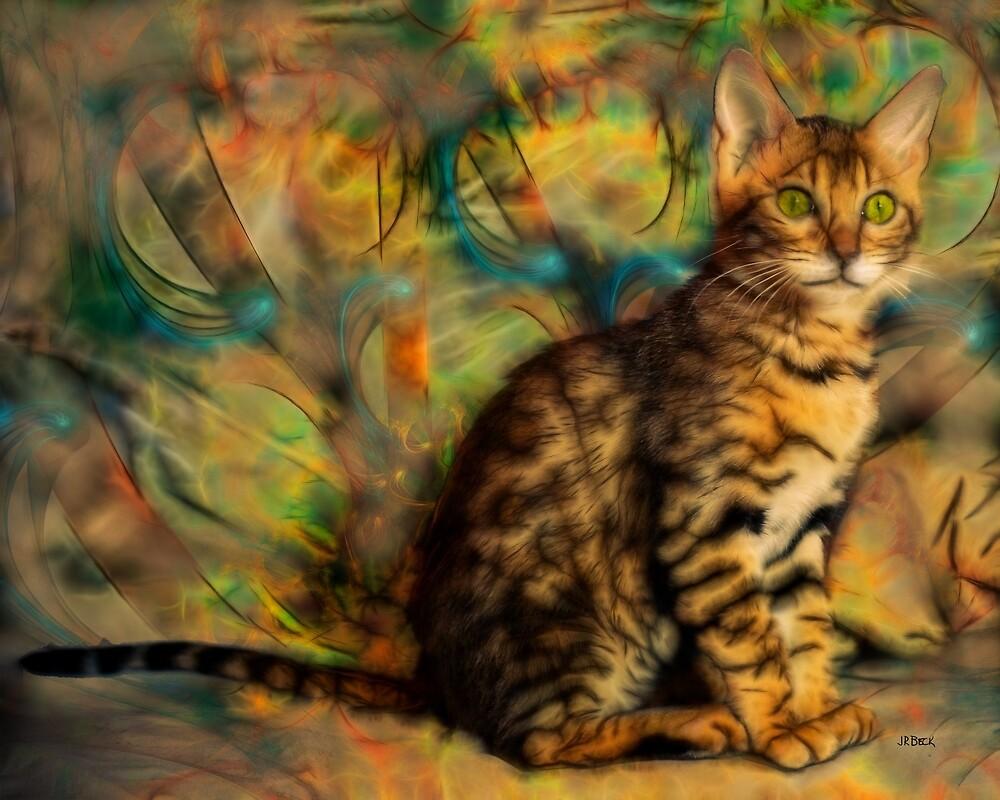 Bengal Kitten - By John Robert Beck by studiobprints