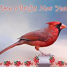 Have a Bright New Year! by Bonnie T.  Barry
