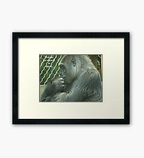 You are not allowed to ape us. Framed Print