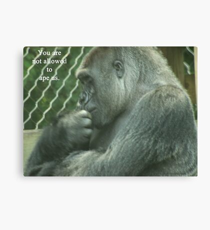 You are not allowed to ape us. Canvas Print