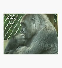 You are not allowed to ape us. Photographic Print