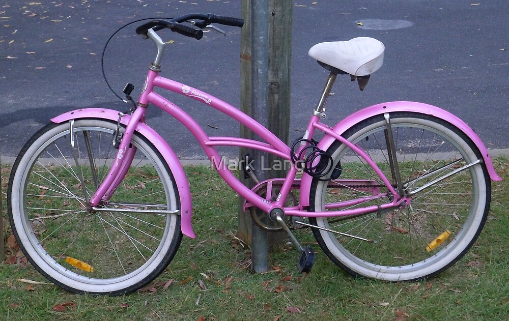 Pink Bike by Mark Lang