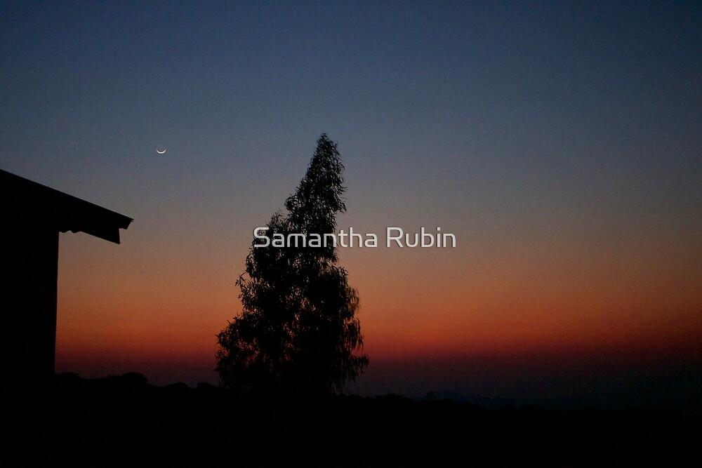 Sunrise  by Samantha Rubin