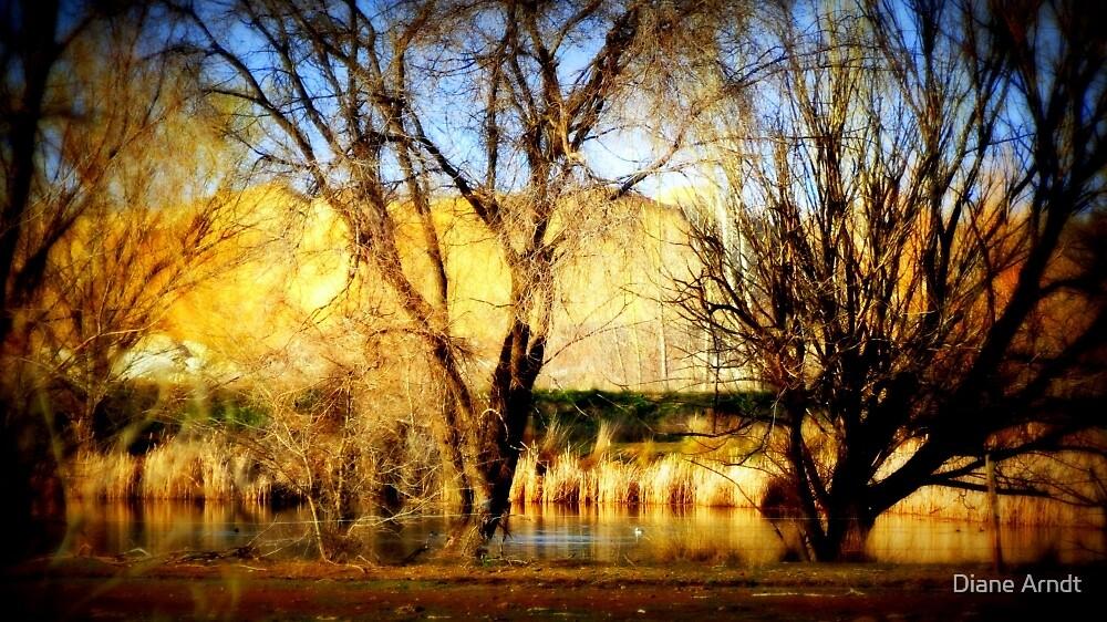 Backside of Lake Lowell...Nampa, Idaho by Diane Arndt