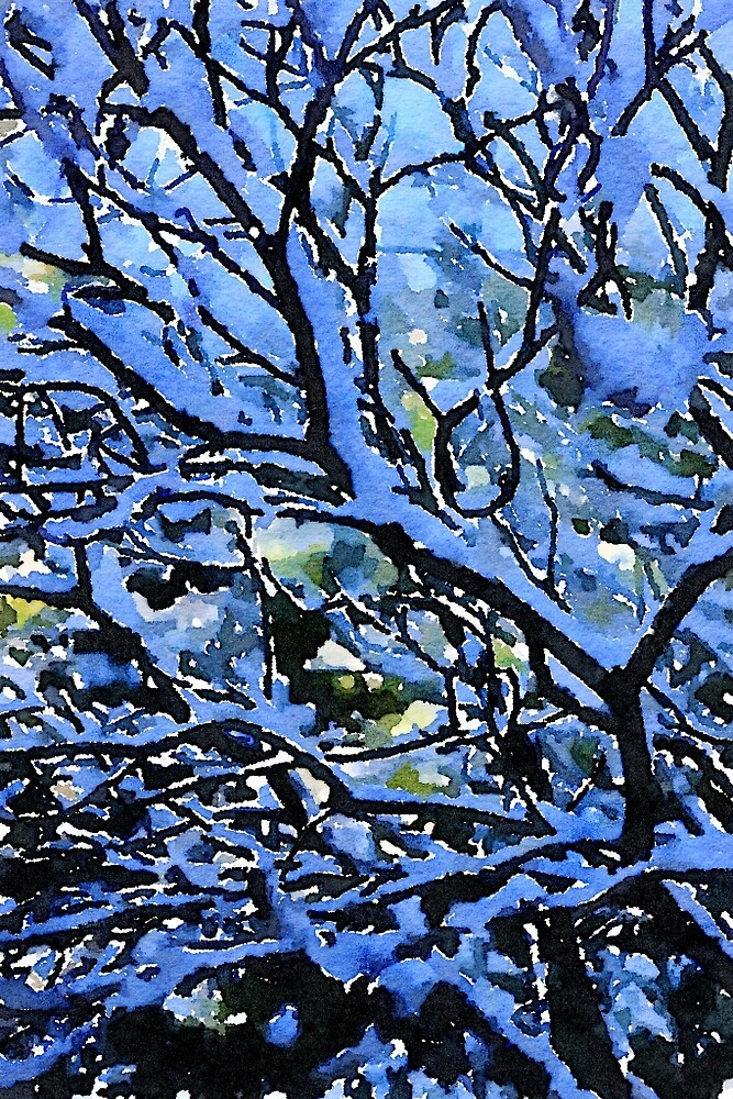 Winter Branches by AnneYungwirth