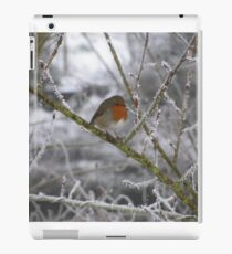 Robin and Winter Scene iPad Case/Skin