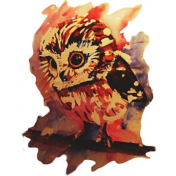 Watercolour Owl by BISCUITANDCO