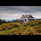 Craig's Hut by mspfoto