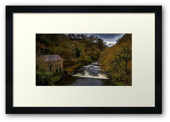 Pentre Cwrt Mill on the River Teifi by mlphoto