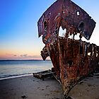 Rusting Bow of the HMQS Gayundah by Tony Steinberg