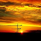 Sunrise silhouetting cranes by George Hunter