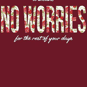 No Worries by Toovalu