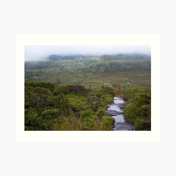 Hiking the Overland Track in Tasmania. Art Print