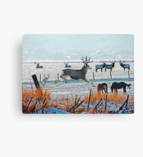 Winter Wildlife Canvas Print