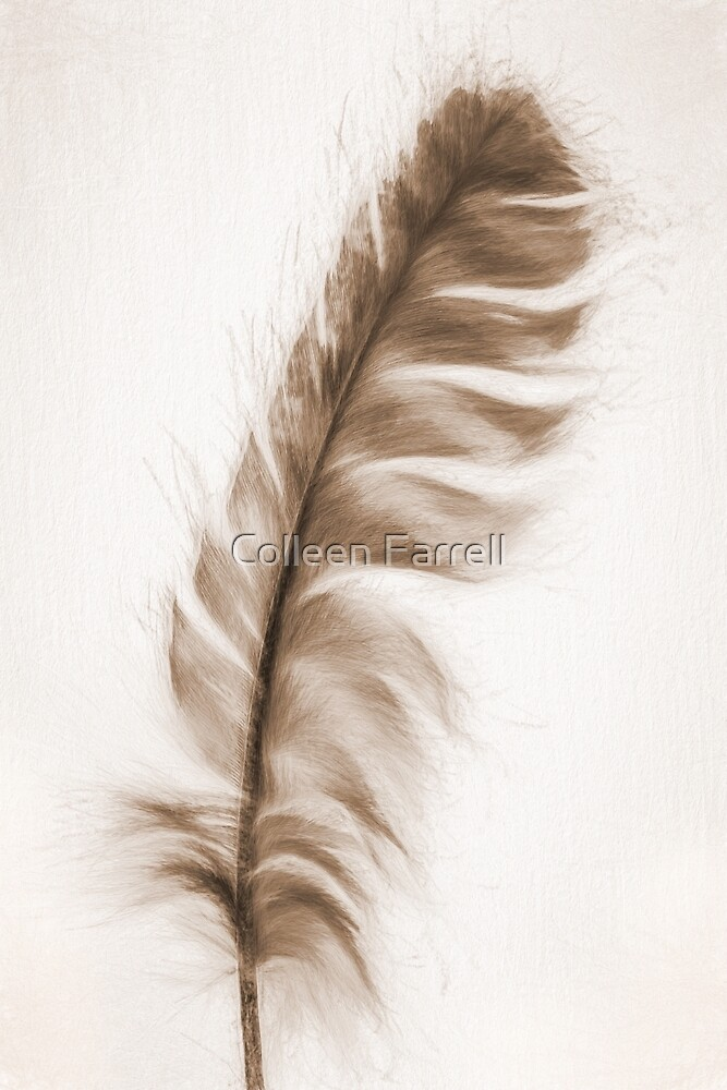 Soft by Colleen Farrell