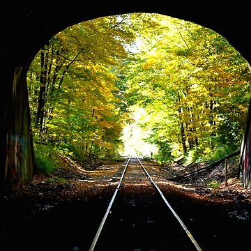 Light at the End of The Tunnel by TruaBelieve