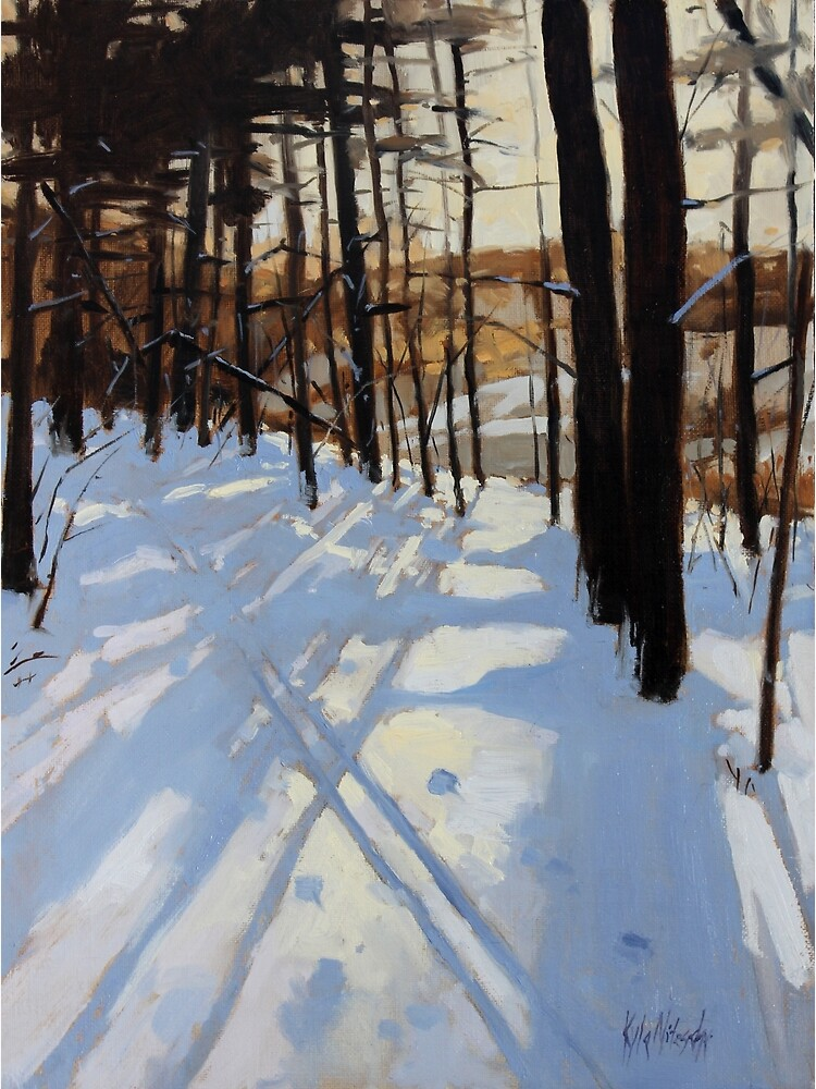 Skiing Beaver Pond Trail by knitzsche