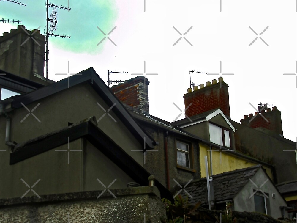 Belfast Roofs and Chimney Pots, Belfast, Northern Ireland by Shulie1
