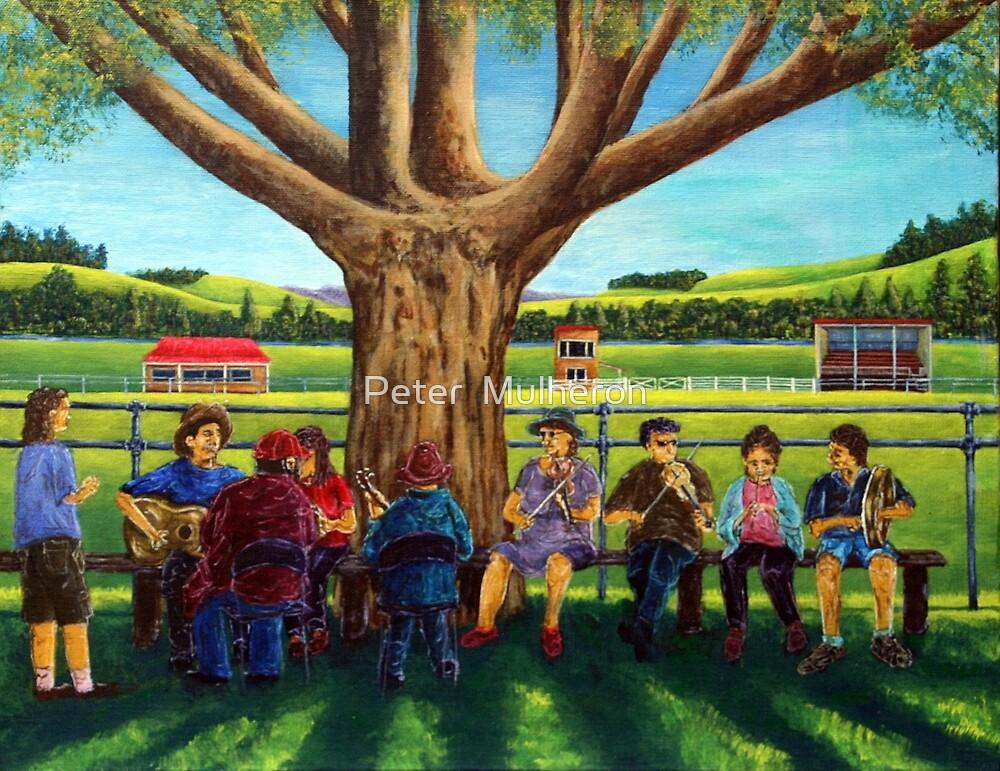 Dorrigo folk & bluegrass Festival5 by Peter  Mulheron