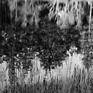 Reflections in Loch Lochan, Scotland by allaballa
