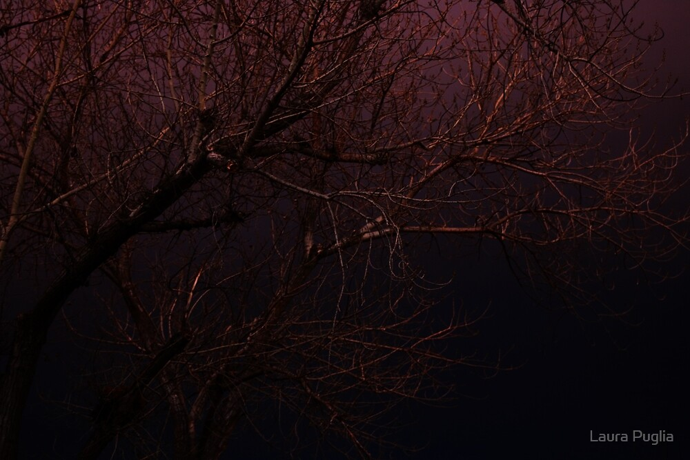 Skies by Laura Puglia