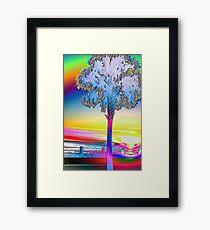 Palmetto rainbow sunset 2 Framed Print