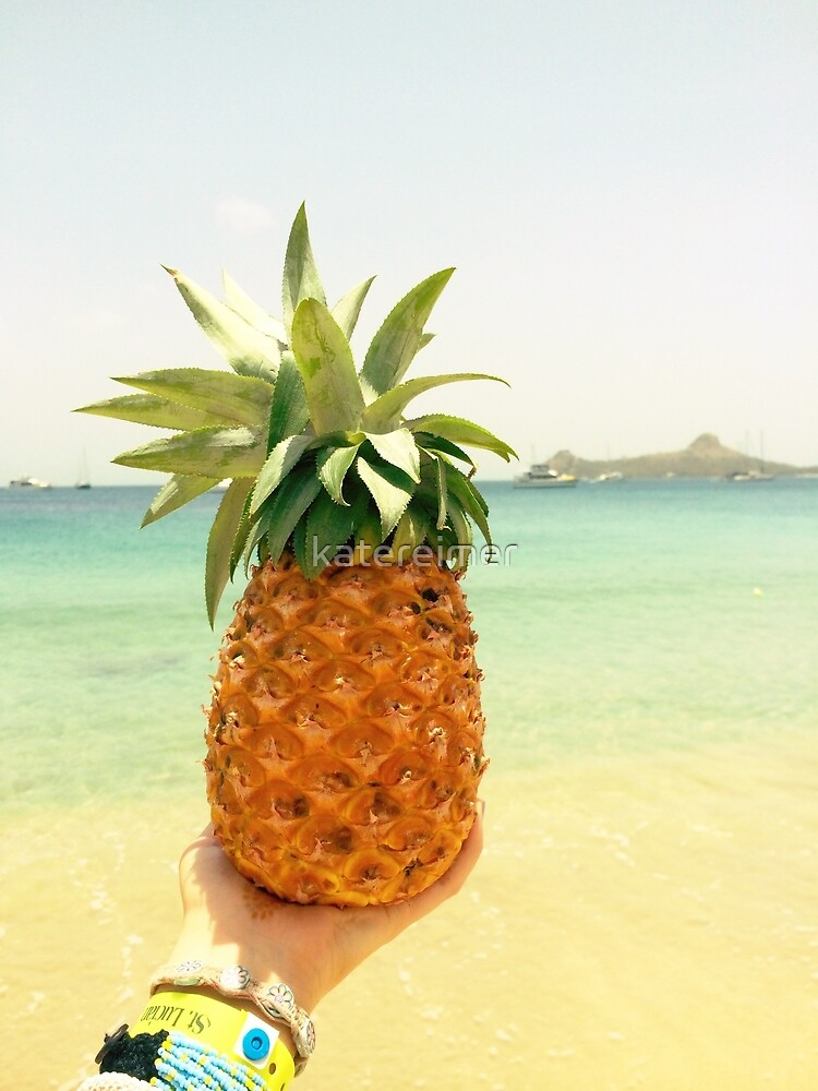 St. Lucian Pineapple  by katereimer