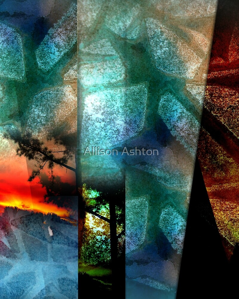 Abstracting Nature by Allison Ashton