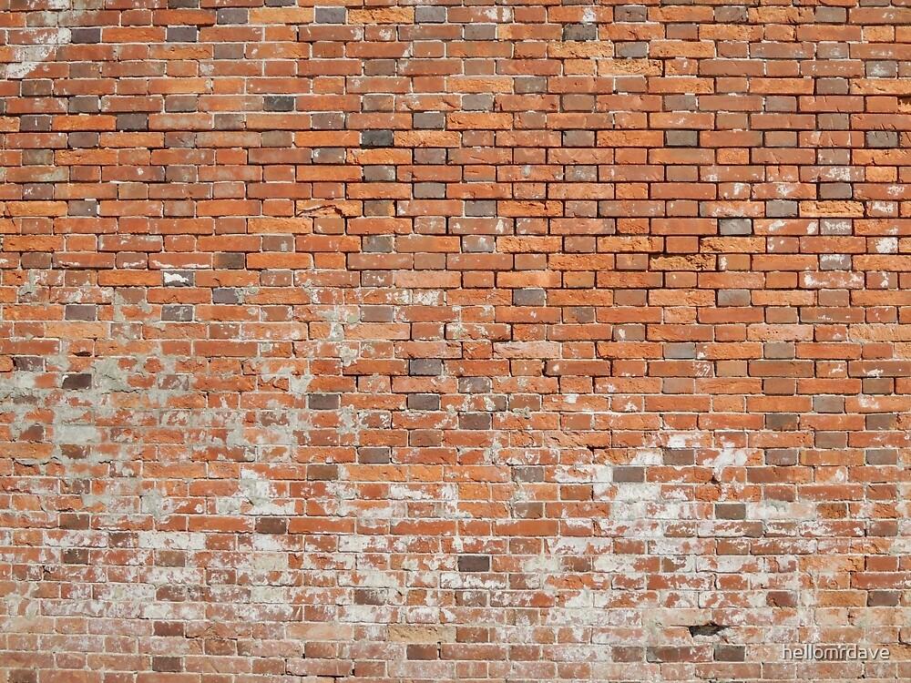 Wall #4 by naturalish