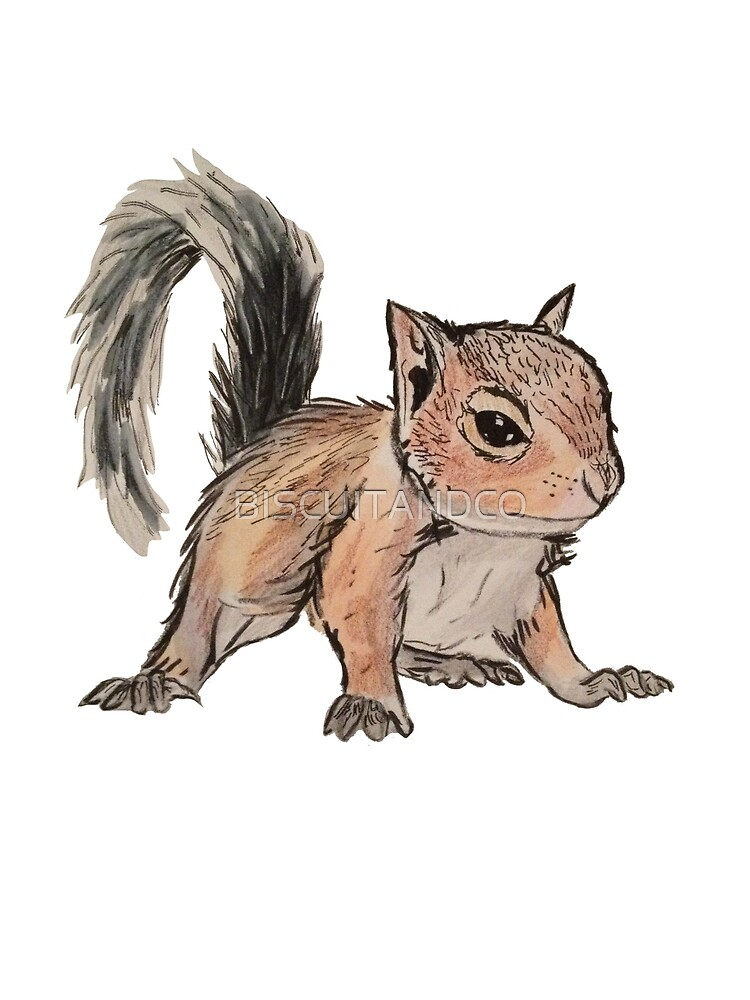 Squirrel! by BISCUITANDCO