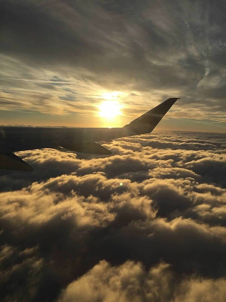 Plane ride by kcoggins